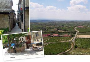 Laguardia / Blick über die Weingärten des Rioja